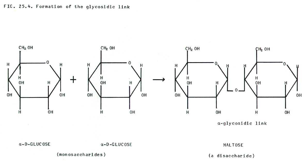chembook co uk  chemistry in perspective for bored and confused    chembook co uk  chemistry in perspective for bored and confused senior school students
